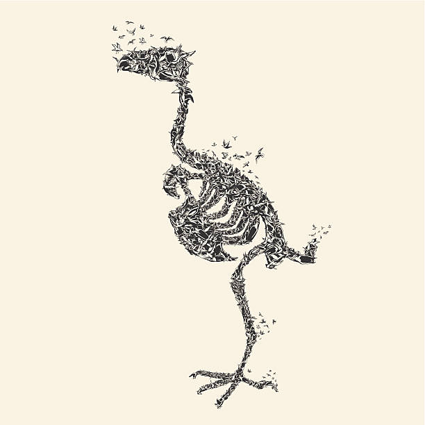 Bird Skeleton made from flying birds vector art illustration