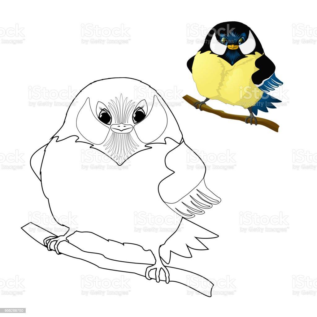 Ilustración De Pájaro Carbonero Para Colorear Para Niños Y