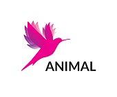 bird, animal, vector, icon