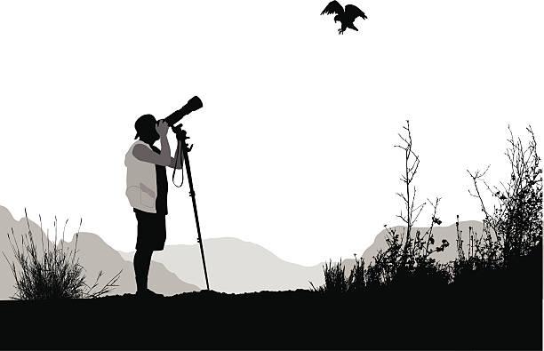 bird watchers vector silhouette - bird watching stock illustrations, clip art, cartoons, & icons
