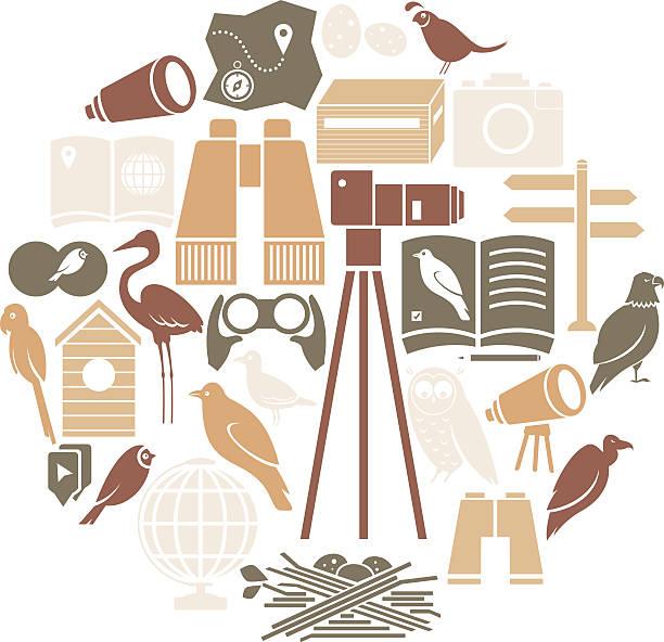 bird watching icon set - bird watching stock illustrations, clip art, cartoons, & icons