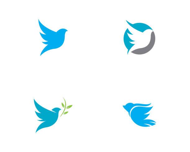 ilustrações de stock, clip art, desenhos animados e ícones de bird wing dove vector illustration - esperança