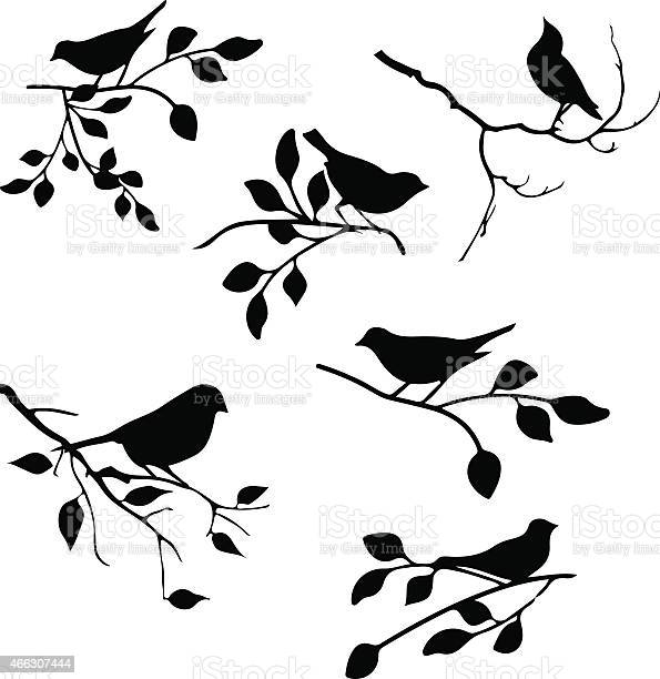 Bird with leaf element vector id466307444?b=1&k=6&m=466307444&s=612x612&h=mxezbtytwliyovffq5l w03x2 rwfzwmyzfk3fj5jdi=