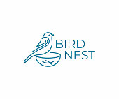 Bird with nest design. Bird watching vector design. Birding illustration