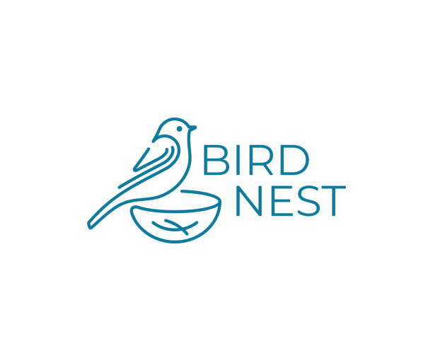 stockillustraties, clipart, cartoons en iconen met vogel met nest design. vogelkijken vector ontwerp. birding illustratie - neerstrijken