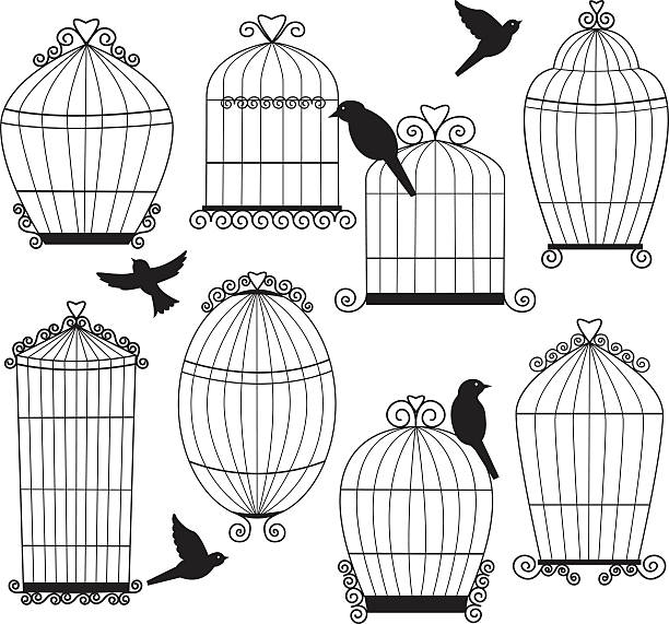 illustrations, cliparts, dessins animés et icônes de ensemble se compose de cages oiseaux et silhouette - dessin cage a oiseaux