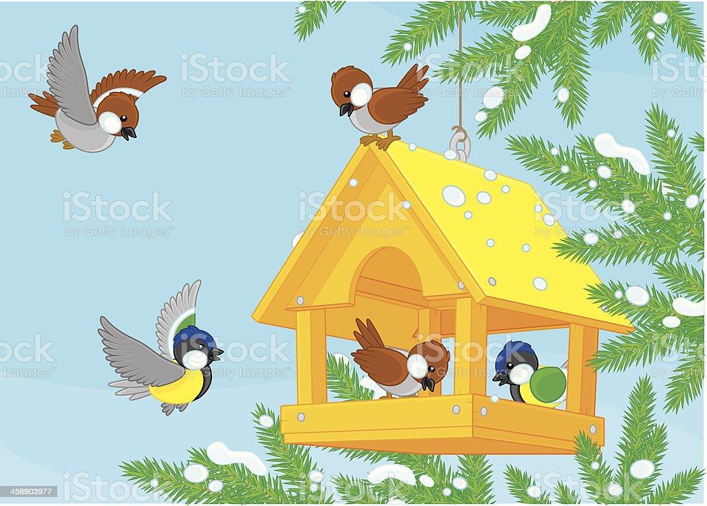 Birdfeeder vector art illustration