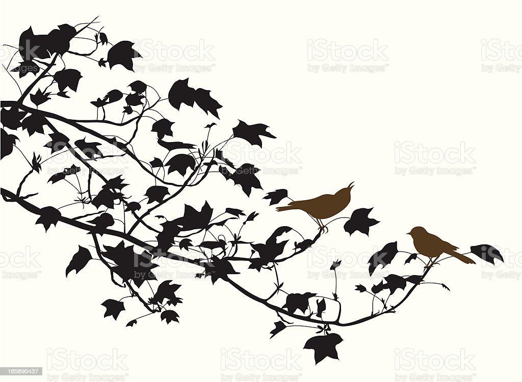 Birdies Vector Silhouette royalty-free stock vector art