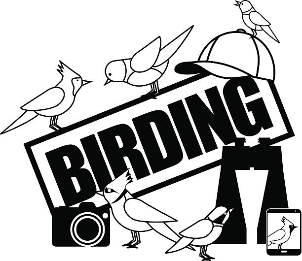 Birding icon with binoculars camera and smartphone EPS 10 vector art illustration