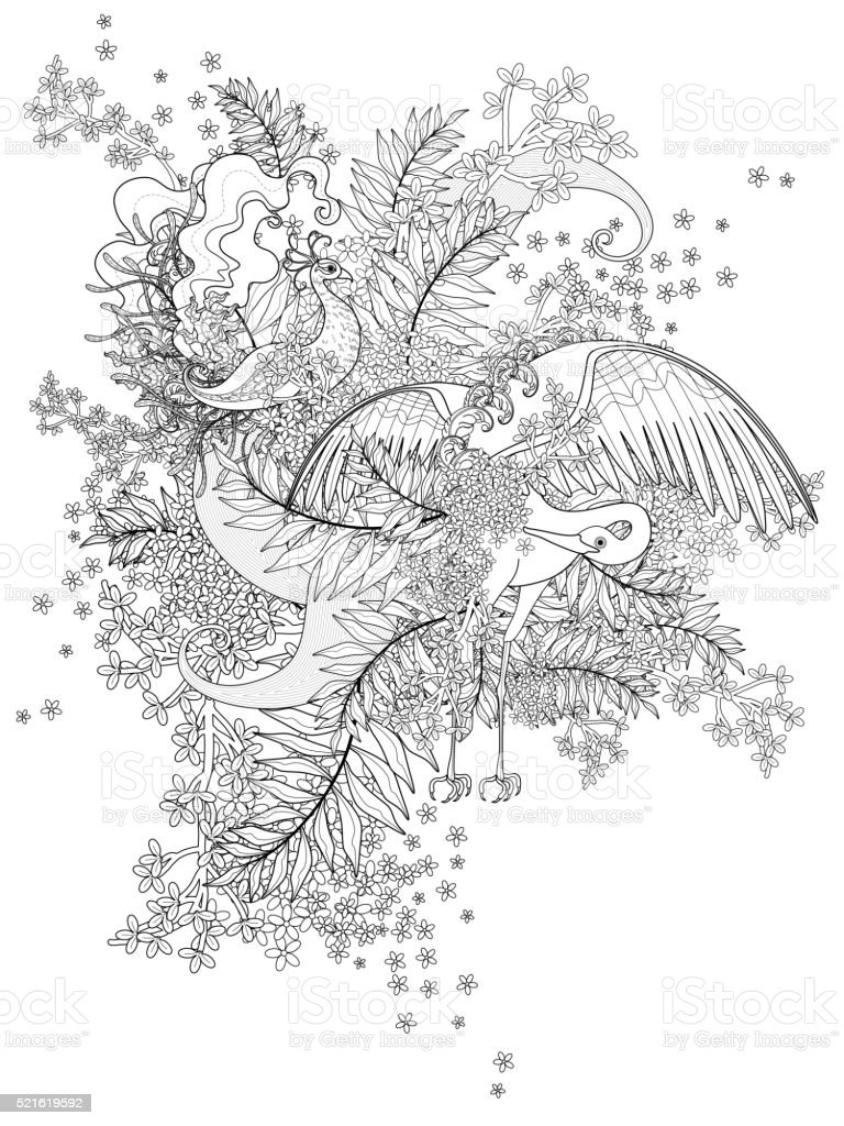Birdsраскраска для взрослых стоковая векторная графика и