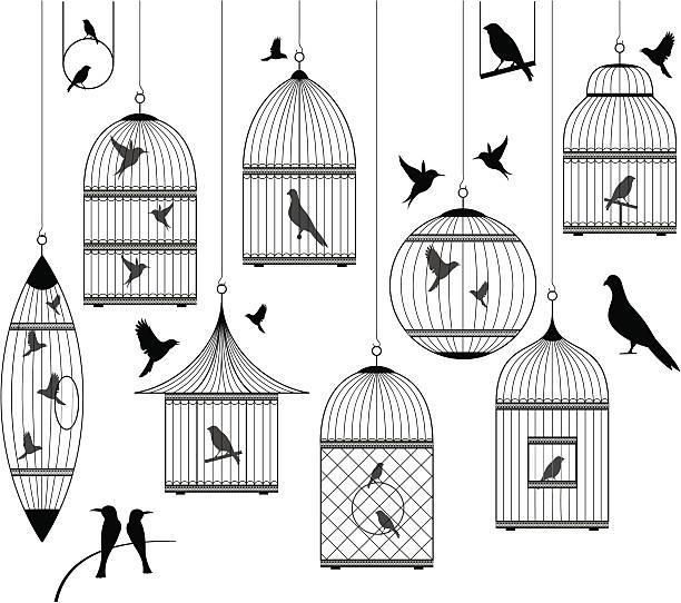 illustrations, cliparts, dessins animés et icônes de collection se compose de cages oiseaux et - dessin cage a oiseaux