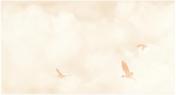 Birds and Cloudscape Mezzotint