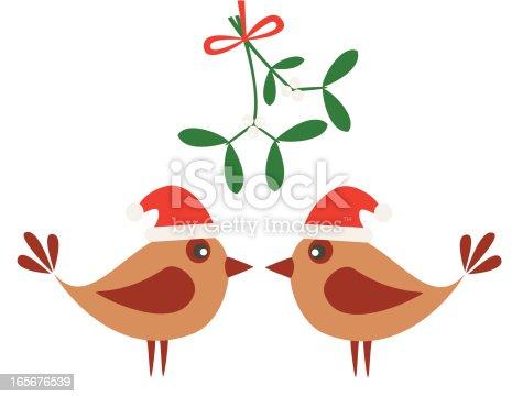 istock Birds and mistletoe 165676539