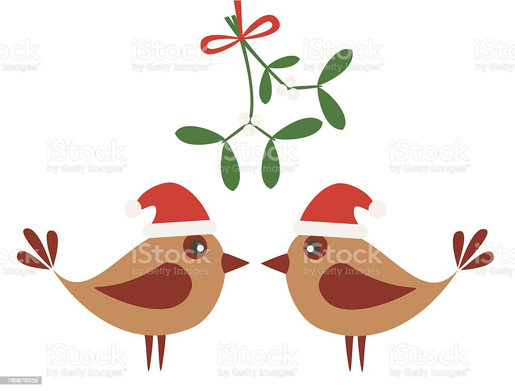 Birds and mistletoe vector art illustration