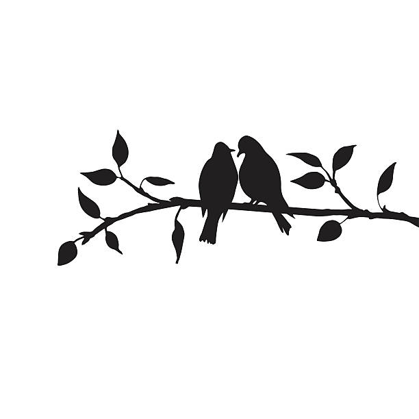 birds at tree silhouettes vector silhouettes of birds at tree, hand drawn songbirds at branch, Valentine symbol, a pair of lovers, isolated vector element bird silhouettes stock illustrations
