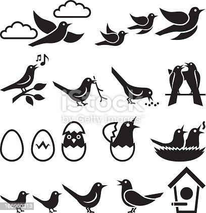 Birds black and white icon set