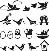 Birds black and white royalty free vector icon set