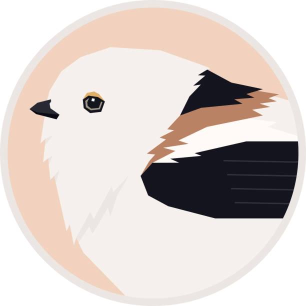 조류 컬렉션 홋카이도, 일본 라운드 프레임에 살고있는 긴 꼬리 의 자취의 시마 에나가 벡터 일러스트 - 오목눈이 stock illustrations