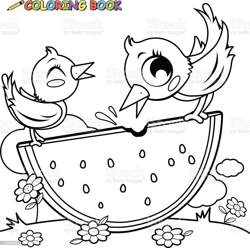 Birds Eating Watermelon Coloring Book Page Stock Vector Art & More ...