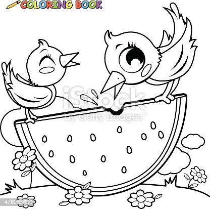 Birds Eating Watermelon Coloring Book Page Stock Vector