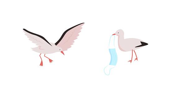 Birds flat color vector character set