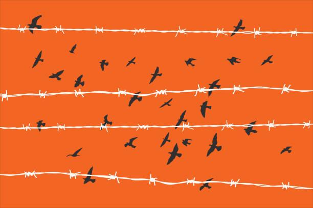 birds flying over broken barbed wire vector art illustration