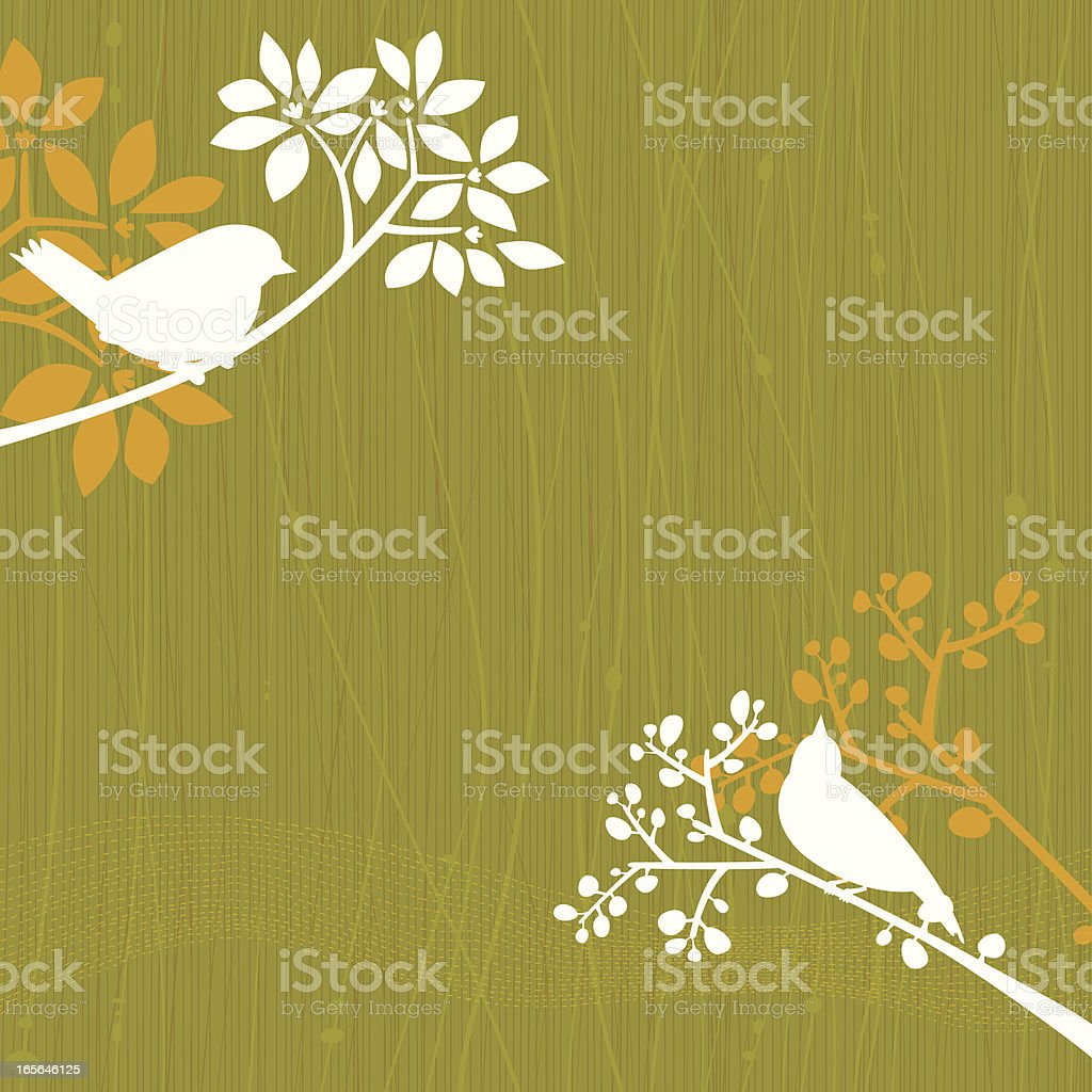 Birds Green Background vector art illustration