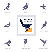 Set of various bird symbols and logo design elements for company and organizations. Collection icons with birds.