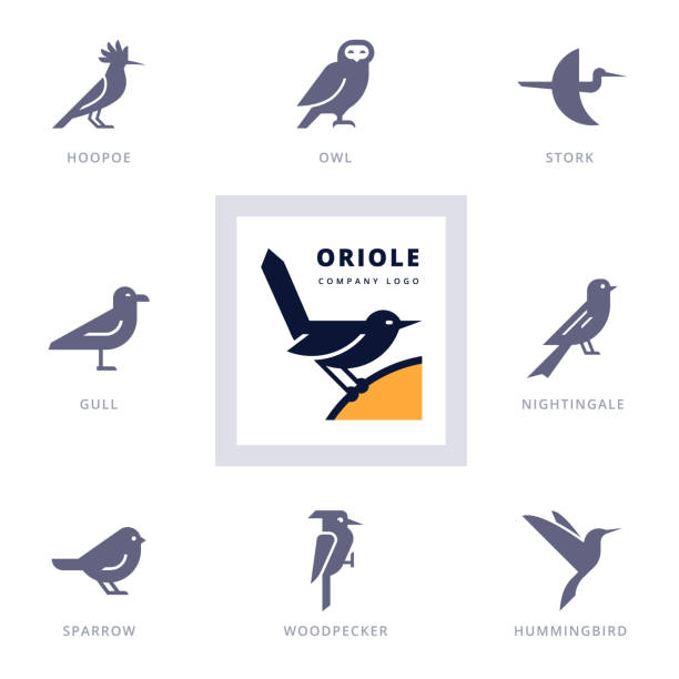 Birds icon set for sign our company. Set of various bird symbols and logo design elements for company and organizations. Collection icons with birds. songbird stock illustrations