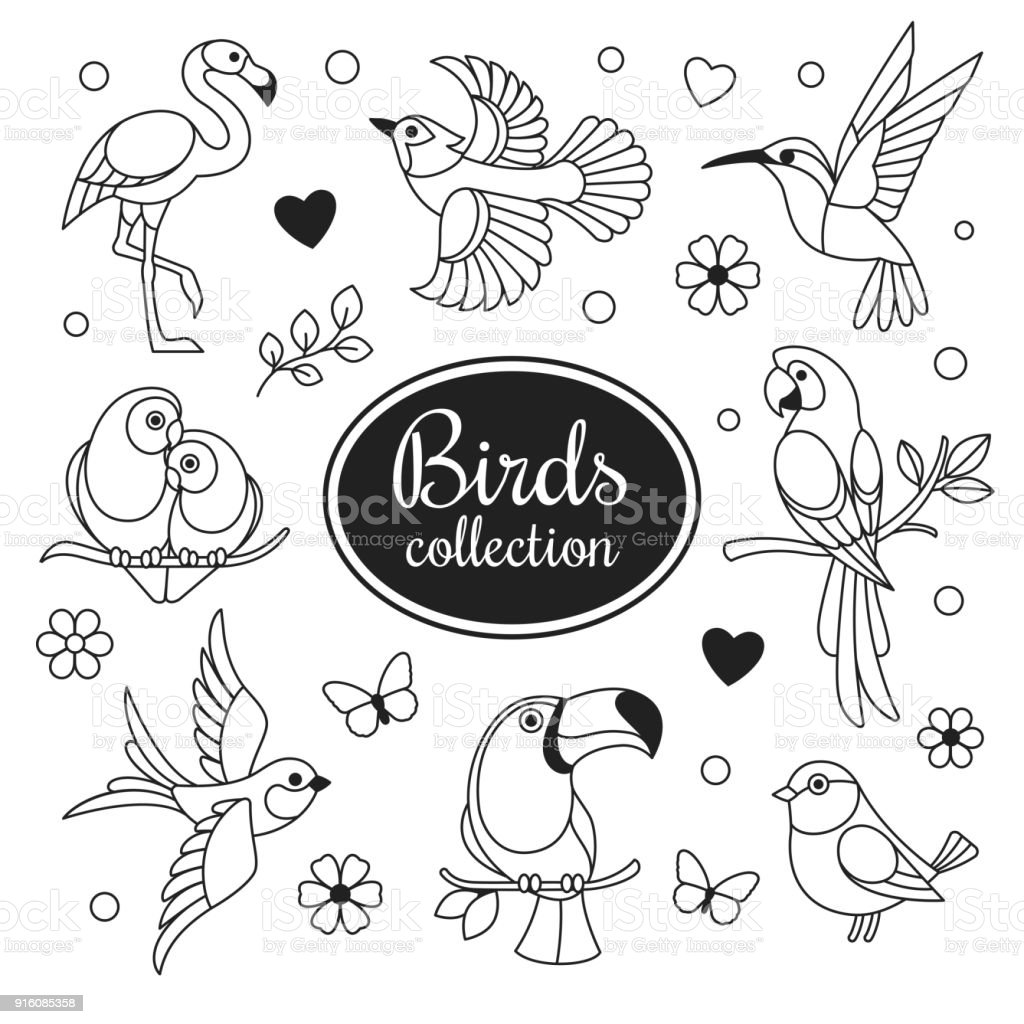 Birds icons collection. vector art illustration