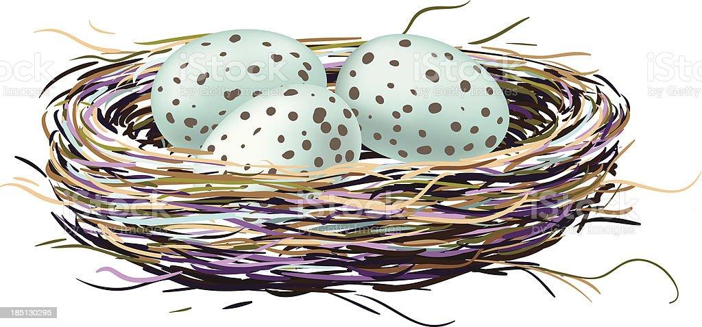 Bird's nest with robin eggs vector art illustration