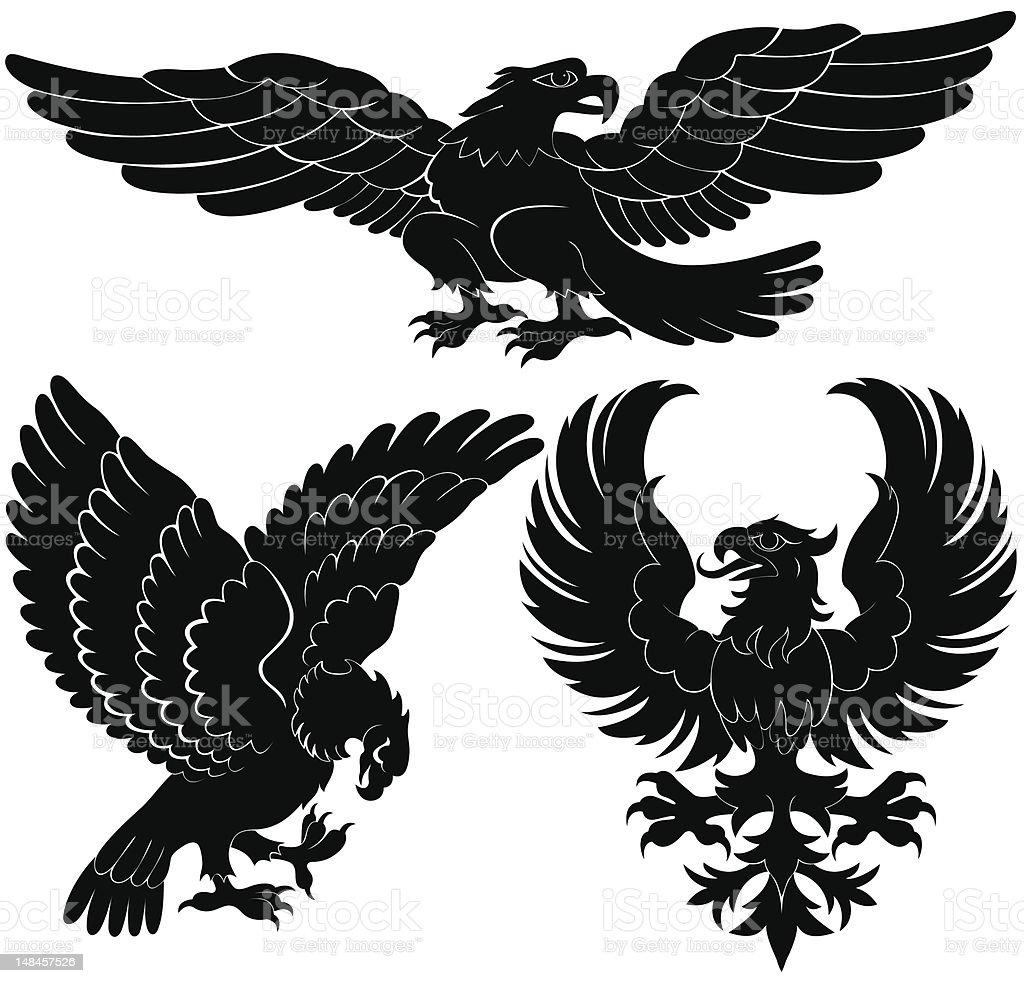 birds of prey heraldry designs stock vector art amp more