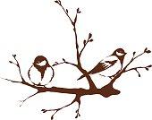 Birds on a branch, spring