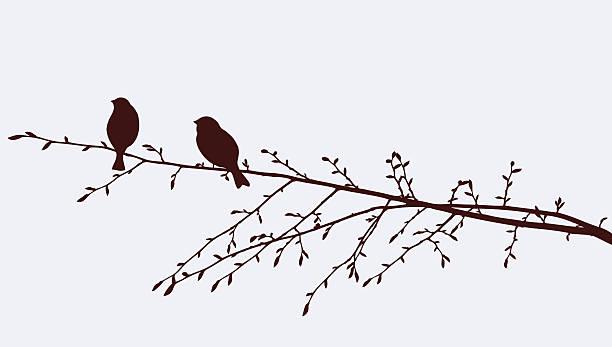 birds on a sprig - twig stock illustrations, clip art, cartoons, & icons