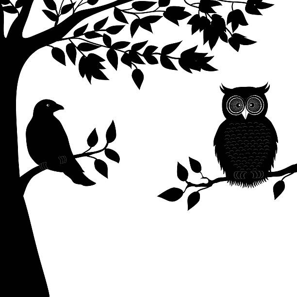Top 60 Owl Tree Silhouettes Clip Art, Vector Graphics and ...