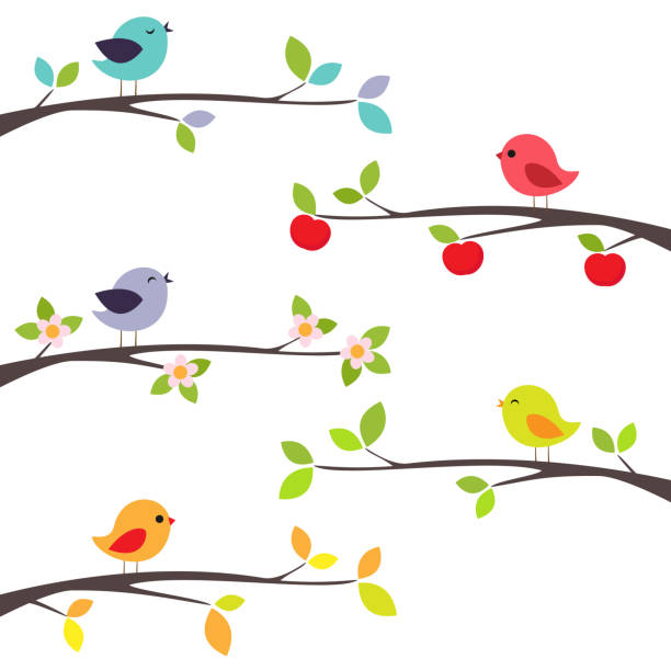 Birds on branches Birds on different branches bird stock illustrations