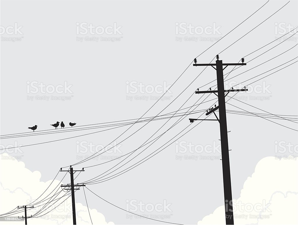 Birds On Powerlines Stock Illustration - Download Image ...
