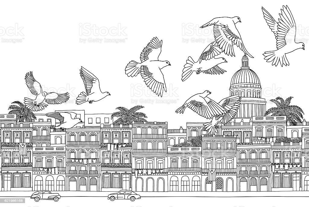 Birds over Havana vector art illustration