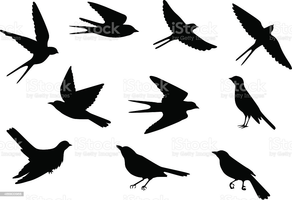 birds pattern stock vector art amp more images of 2015