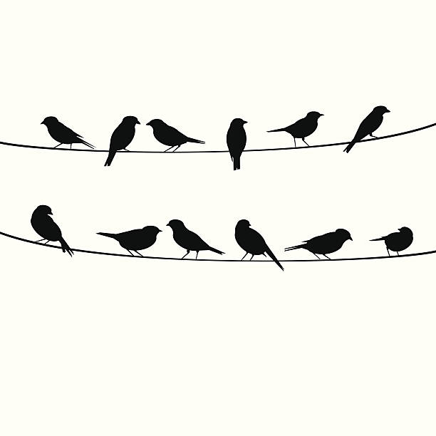 birds resting on wire - birds stock illustrations