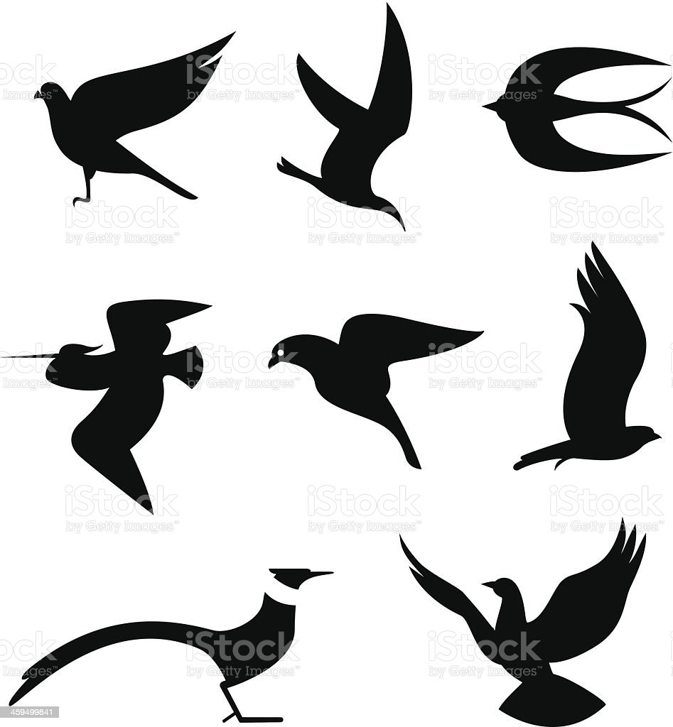 Birds Set Vector Illustrations of Birds icons (eps 8). Animal stock vector