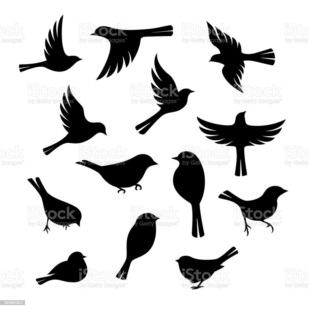 Colección de silueta de aves. ilustración de colección de silueta de aves y más vectores libres de derechos de ala de animal libre de derechos