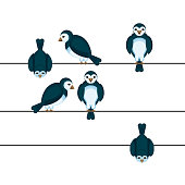 Birds sitting on wire in different positions vector illustration in cartoon style. Sparrows on back side and front view
