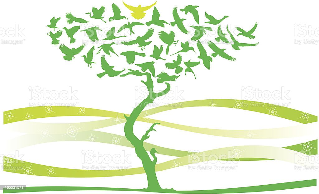 Birds Tree vector art illustration