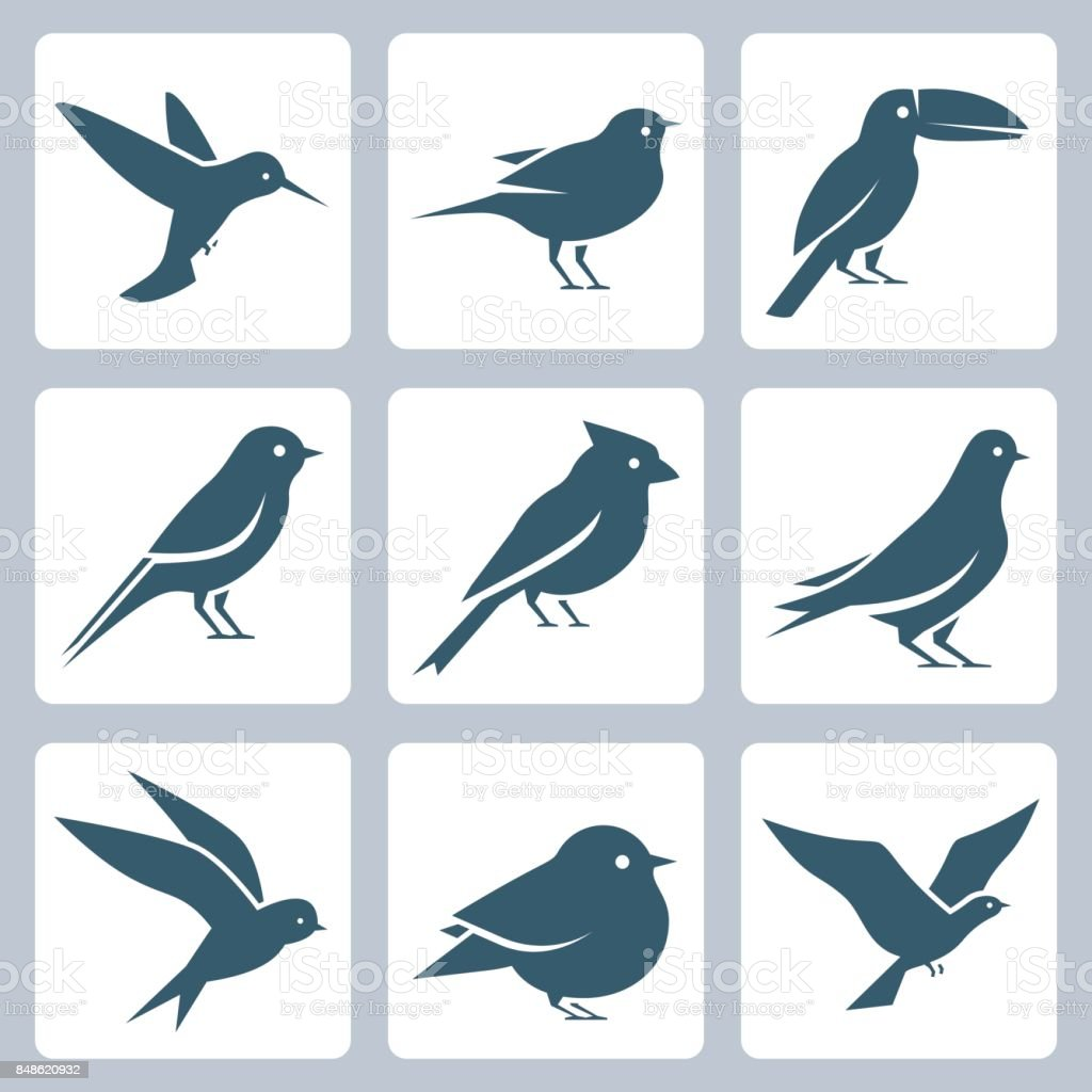 Birds vector icon set vector art illustration