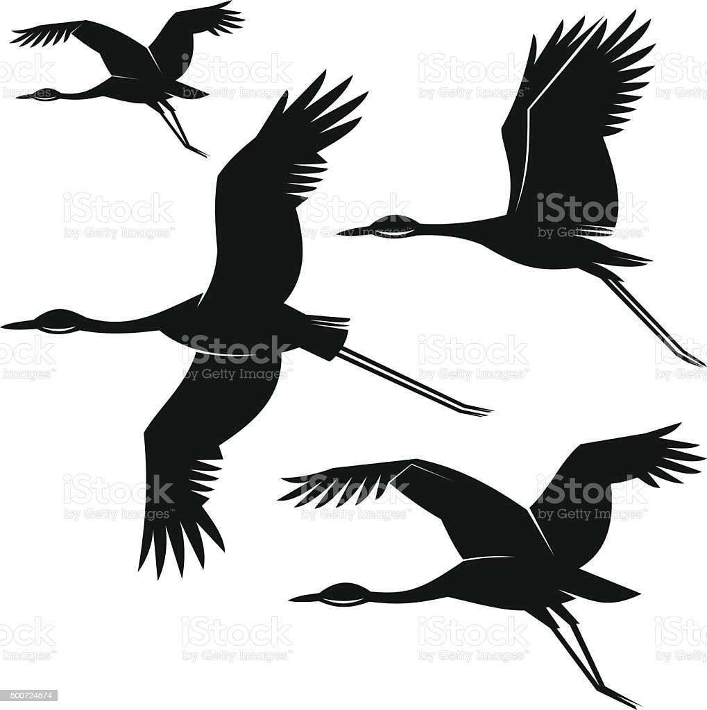 Uccelli - illustrazione arte vettoriale