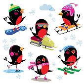 Birds Doing Winter Sport.