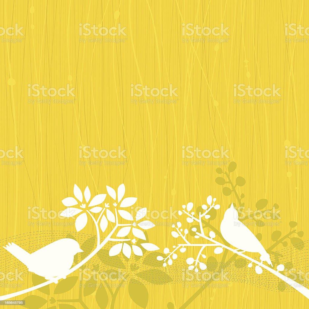 Birds Yellow Background vector art illustration