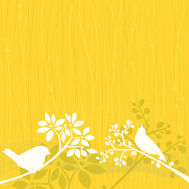 Birds Yellow Background vector art illustration
