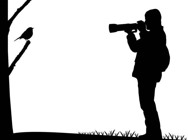 birdwatcher photographs a bird silhouette - bird watching stock illustrations, clip art, cartoons, & icons